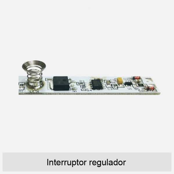 Interruptor regulador